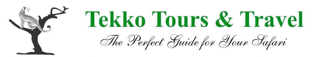 Tekko-Tours-bosscustomz.co.ke
